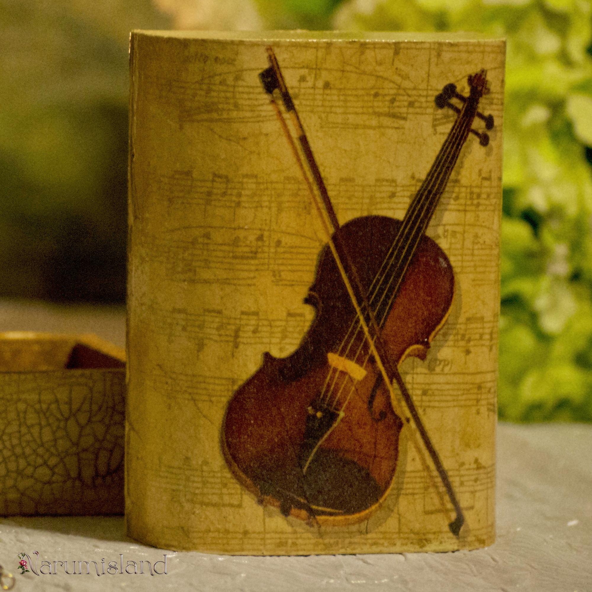 Cutie cu note muzicale si vioara