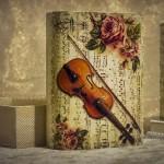 cutie cu vioara si trandafiri